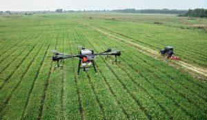 L'IA souterraine : la croissance des plantes prédite par l'imagerie des drones